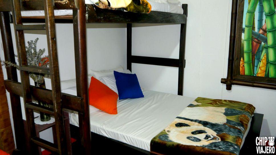 Filandia Hostel Chip Viajero (6)