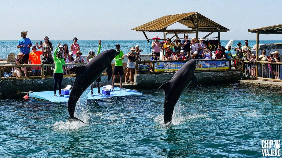 Como Llegar a Playa Blanca Acuario Santa Marta