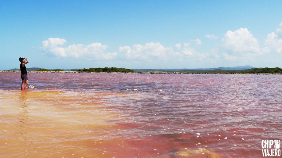Como Llegar Al Mar Rosa Colombia